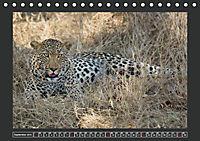 Afrikas Tiere im FokusAT-Version (Tischkalender 2019 DIN A5 quer) - Produktdetailbild 9
