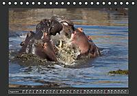Afrikas Tiere im FokusAT-Version (Tischkalender 2019 DIN A5 quer) - Produktdetailbild 8