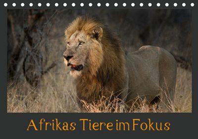 Afrikas Tiere im FokusAT-Version (Tischkalender 2019 DIN A5 quer), Johann Schörkhuber