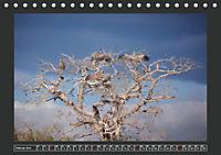 Afrikas Tiere im FokusAT-Version (Tischkalender 2019 DIN A5 quer) - Produktdetailbild 2