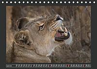 Afrikas Tiere im FokusAT-Version (Tischkalender 2019 DIN A5 quer) - Produktdetailbild 4
