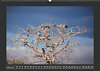 Afrikas Tiere im FokusAT-Version (Wandkalender 2019 DIN A2 quer) - Produktdetailbild 2