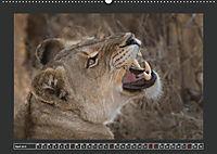 Afrikas Tiere im FokusAT-Version (Wandkalender 2019 DIN A2 quer) - Produktdetailbild 4