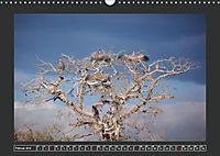 Afrikas Tiere im FokusAT-Version (Wandkalender 2019 DIN A3 quer) - Produktdetailbild 2