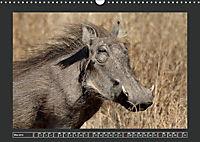 Afrikas Tiere im FokusAT-Version (Wandkalender 2019 DIN A3 quer) - Produktdetailbild 5