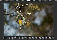 Afrikas Tiere im FokusAT-Version (Wandkalender 2019 DIN A3 quer) - Produktdetailbild 7