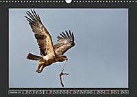 Afrikas Tiere im FokusAT-Version (Wandkalender 2019 DIN A3 quer) - Produktdetailbild 12