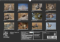 Afrikas Tiere im FokusAT-Version (Wandkalender 2019 DIN A3 quer) - Produktdetailbild 13