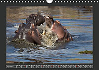 Afrikas Tiere im FokusAT-Version (Wandkalender 2019 DIN A4 quer) - Produktdetailbild 8