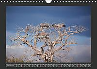 Afrikas Tiere im FokusAT-Version (Wandkalender 2019 DIN A4 quer) - Produktdetailbild 2