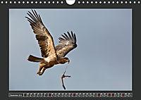 Afrikas Tiere im FokusAT-Version (Wandkalender 2019 DIN A4 quer) - Produktdetailbild 12