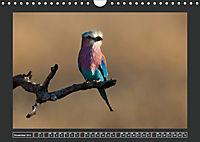 Afrikas Tiere im FokusAT-Version (Wandkalender 2019 DIN A4 quer) - Produktdetailbild 11