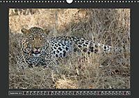 Afrikas Tiere im FokusAT-Version (Wandkalender 2019 DIN A3 quer) - Produktdetailbild 9