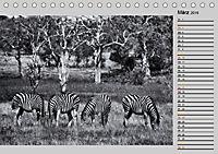 Afrikas Tierwelt in schwarz & weiß (Tischkalender 2019 DIN A5 quer) - Produktdetailbild 3