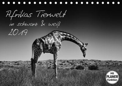 Afrikas Tierwelt in schwarz & weiß (Tischkalender 2019 DIN A5 quer), Kirsten Karius