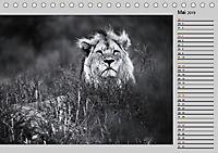 Afrikas Tierwelt in schwarz & weiß (Tischkalender 2019 DIN A5 quer) - Produktdetailbild 5