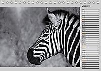 Afrikas Tierwelt in schwarz & weiß (Tischkalender 2019 DIN A5 quer) - Produktdetailbild 7