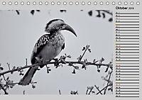 Afrikas Tierwelt in schwarz & weiß (Tischkalender 2019 DIN A5 quer) - Produktdetailbild 10