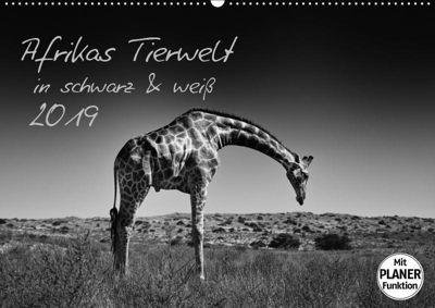 Afrikas Tierwelt in schwarz & weiß (Wandkalender 2019 DIN A2 quer), Kirsten Karius, Kirsten und Holger Karius