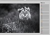 Afrikas Tierwelt in schwarz & weiß (Wandkalender 2019 DIN A2 quer) - Produktdetailbild 5