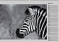 Afrikas Tierwelt in schwarz & weiß (Wandkalender 2019 DIN A2 quer) - Produktdetailbild 7
