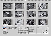 Afrikas Tierwelt in schwarz & weiß (Wandkalender 2019 DIN A2 quer) - Produktdetailbild 13
