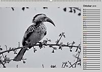 Afrikas Tierwelt in schwarz & weiß (Wandkalender 2019 DIN A2 quer) - Produktdetailbild 10