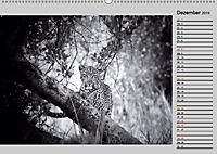 Afrikas Tierwelt in schwarz & weiß (Wandkalender 2019 DIN A2 quer) - Produktdetailbild 12