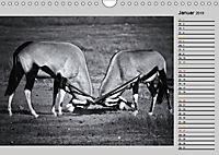 Afrikas Tierwelt in schwarz & weiß (Wandkalender 2019 DIN A4 quer) - Produktdetailbild 1