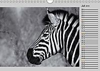 Afrikas Tierwelt in schwarz & weiss (Wandkalender 2019 DIN A4 quer) - Produktdetailbild 7