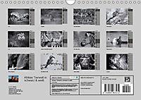 Afrikas Tierwelt in schwarz & weiss (Wandkalender 2019 DIN A4 quer) - Produktdetailbild 13
