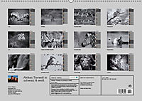 Afrikas Tierwelt in schwarz & weiss (Wandkalender 2019 DIN A2 quer) - Produktdetailbild 13