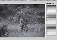 Afrikas Tierwelt in schwarz & weiss (Wandkalender 2019 DIN A2 quer) - Produktdetailbild 2