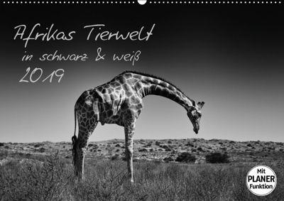 Afrikas Tierwelt in schwarz & weiss (Wandkalender 2019 DIN A2 quer), Kirsten Karius