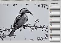 Afrikas Tierwelt in schwarz & weiss (Wandkalender 2019 DIN A2 quer) - Produktdetailbild 10