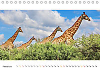 AFRIKAS TIERWELT Panorama Impressionen (Tischkalender 2019 DIN A5 quer) - Produktdetailbild 2