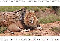 AFRIKAS TIERWELT Panorama Impressionen (Tischkalender 2019 DIN A5 quer) - Produktdetailbild 9