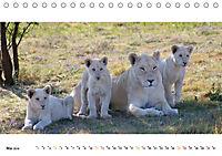 AFRIKAS TIERWELT Panorama Impressionen (Tischkalender 2019 DIN A5 quer) - Produktdetailbild 5