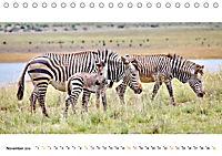 AFRIKAS TIERWELT Panorama Impressionen (Tischkalender 2019 DIN A5 quer) - Produktdetailbild 11