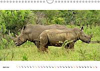 AFRIKAS TIERWELT Panorama Impressionen (Wandkalender 2019 DIN A4 quer) - Produktdetailbild 6