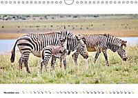 AFRIKAS TIERWELT Panorama Impressionen (Wandkalender 2019 DIN A4 quer) - Produktdetailbild 11