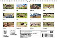 AFRIKAS TIERWELT Panorama Impressionen (Wandkalender 2019 DIN A4 quer) - Produktdetailbild 13