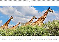 AFRIKAS TIERWELT Panorama Impressionen (Wandkalender 2019 DIN A3 quer) - Produktdetailbild 2