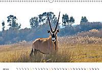 AFRIKAS TIERWELT Panorama Impressionen (Wandkalender 2019 DIN A3 quer) - Produktdetailbild 7