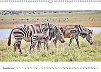 AFRIKAS TIERWELT Panorama Impressionen (Wandkalender 2019 DIN A3 quer) - Produktdetailbild 11