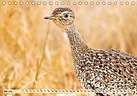 Afrikas Vogelwelt 2019 (Tischkalender 2019 DIN A5 quer) - Produktdetailbild 5