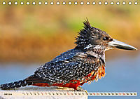 Afrikas Vogelwelt 2019 (Tischkalender 2019 DIN A5 quer) - Produktdetailbild 7