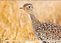 Afrikas Vogelwelt 2019 (Wandkalender 2019 DIN A2 quer) - Produktdetailbild 5