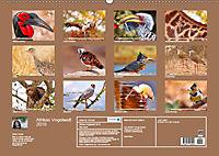 Afrikas Vogelwelt 2019 (Wandkalender 2019 DIN A2 quer) - Produktdetailbild 13
