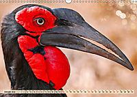 Afrikas Vogelwelt 2019 (Wandkalender 2019 DIN A3 quer) - Produktdetailbild 1